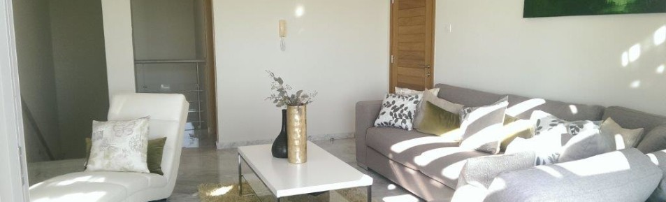 2 bedroom apartment in Amathus