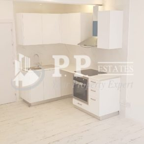Fully renovated 1 bedroom apartment near Four Seasons